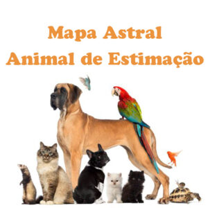 Mapa Astral Pet